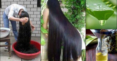 घर पर ऐसे बनाएं एलोवेरा  से तेल जिससे बाल होंगे दुगुने तेजी से लंबे और घने